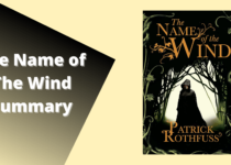 The-Name-of-The-Wind-summary