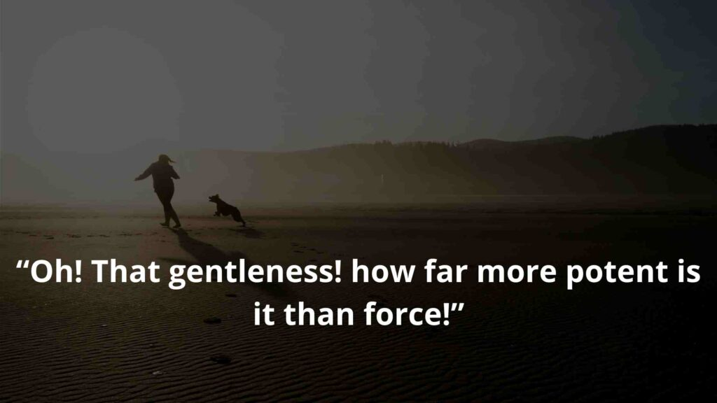 """""""Oh! That gentleness! how far more potent is it than force!"""" Jane Eyre Quotes (4)"""