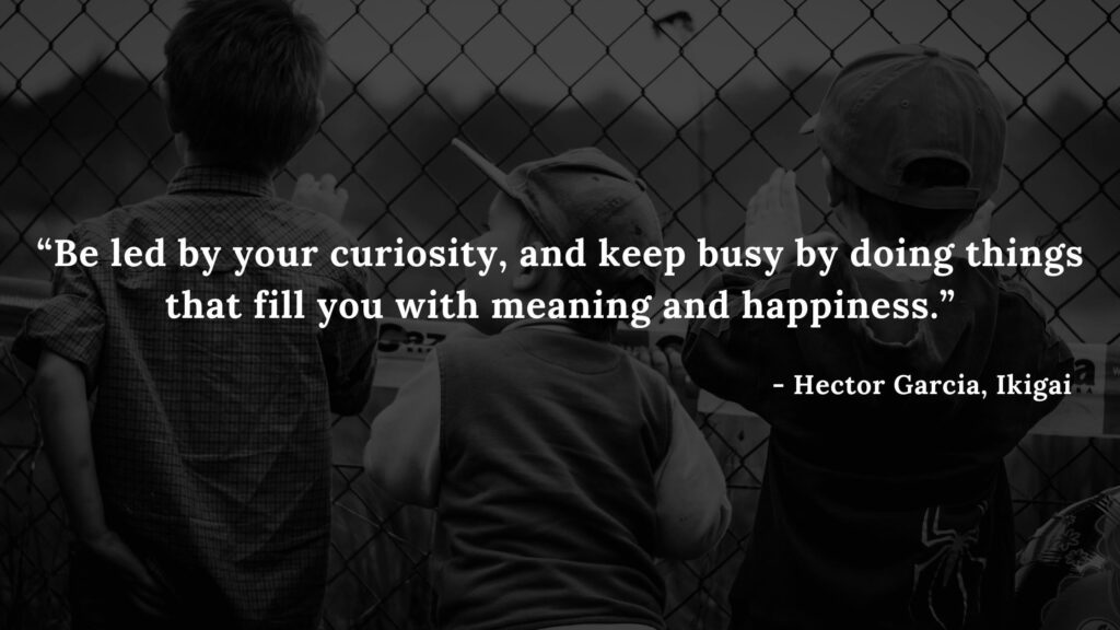 Be led by your curiosity, and keep busy by doing things that fill you with meaning and happiness. - Hector Garcia, Ikigai