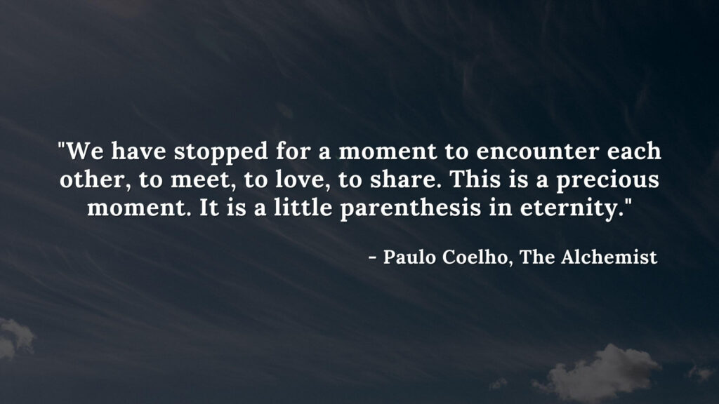 We have stopped for a moment to encounter each other, to meet, to love, to share. This is a precious moment. It is a little parenthesis in eternity. - Paulo coelho, The Alchemist quotes