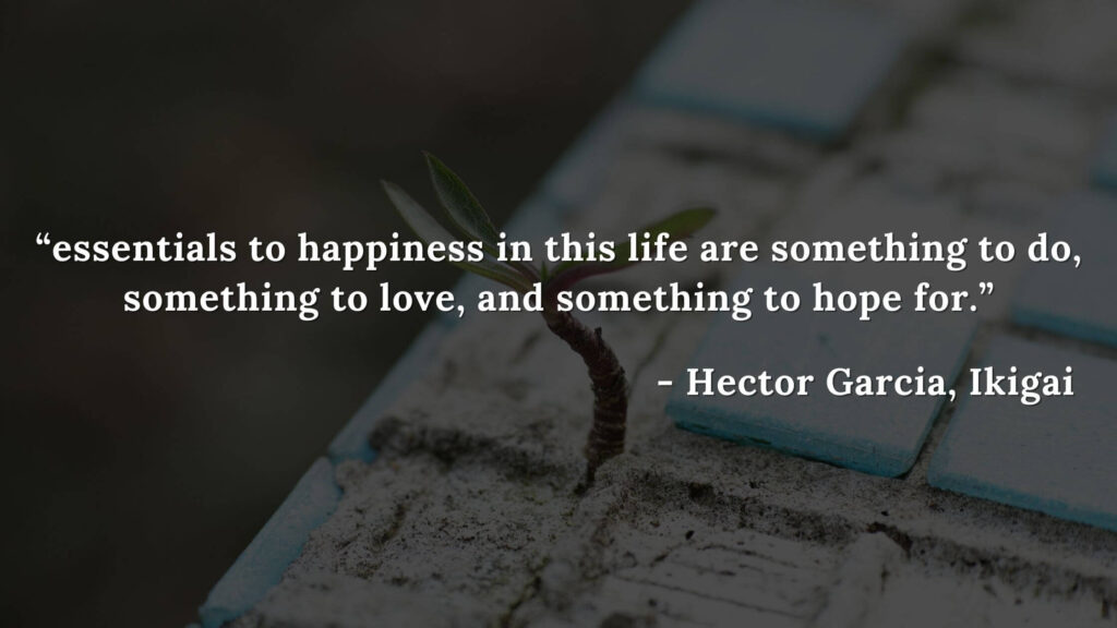 essentials to happiness in this life are something to do, something to love, and something to hope for. - Hector Garcia, Ikigai