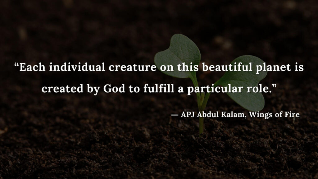 """""""Each individual creature on this beautiful planet is created by God to fulfill a particular role."""" - wings of fire quotes by abdul kalam (13)"""