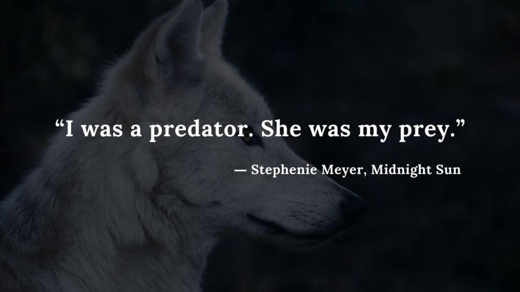 """I was a predator. She was my prey."" - Stephenie Meyer, Midnight Sun book quotes (5)"